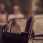Neobjasněný děsivý případ Dita a Kamila, vyšetřování, Psychiatrická léčebna Opava
