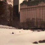 Sám doma 2: Ztracen v New Yorku, Kevin, Hotel Plaza, New York